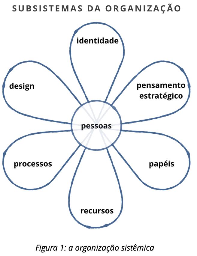 Figura 1: A Organização Sistêmica