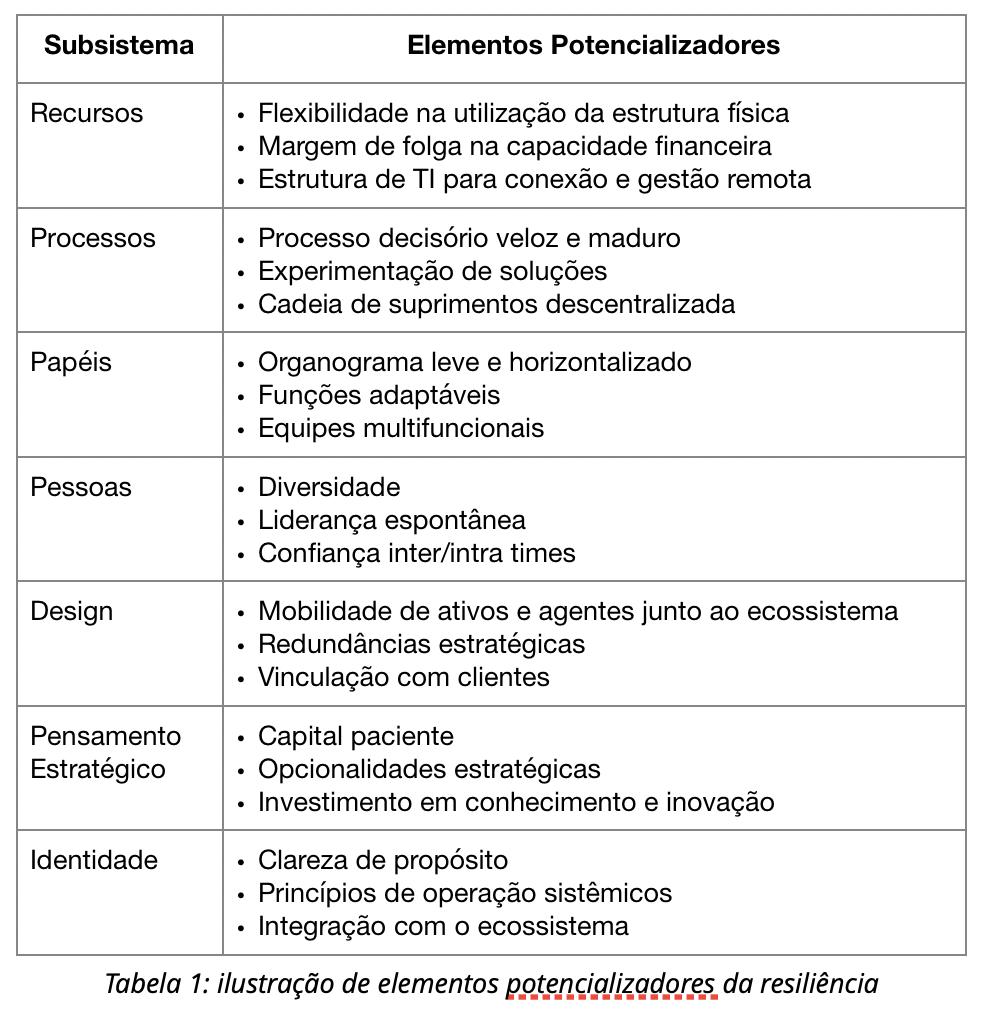 Tabela 1: Ilustração de elementos potencializados da resiliência