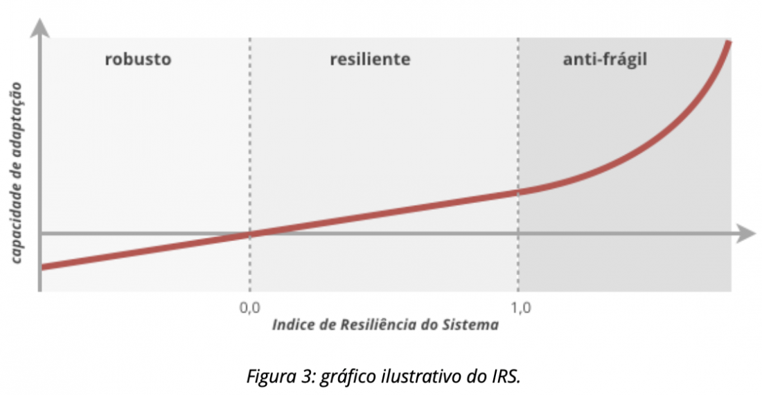 Figura 3: gráfico ilustrativo do IRS